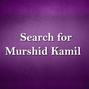Search-for-Murshid-Kamil