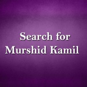 Search-for-Murshid-Kamil