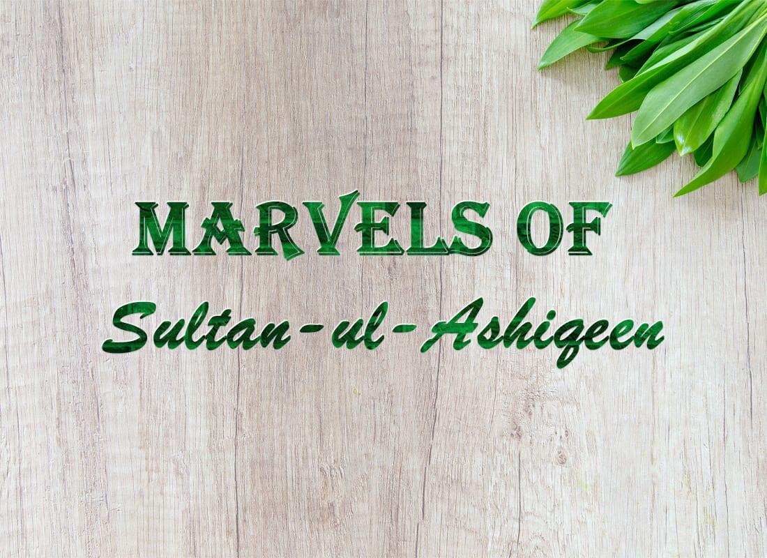 marvels-sultan-ul-ashiqeen-faqr